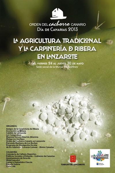 Cartel Dia Canarias 2013-2